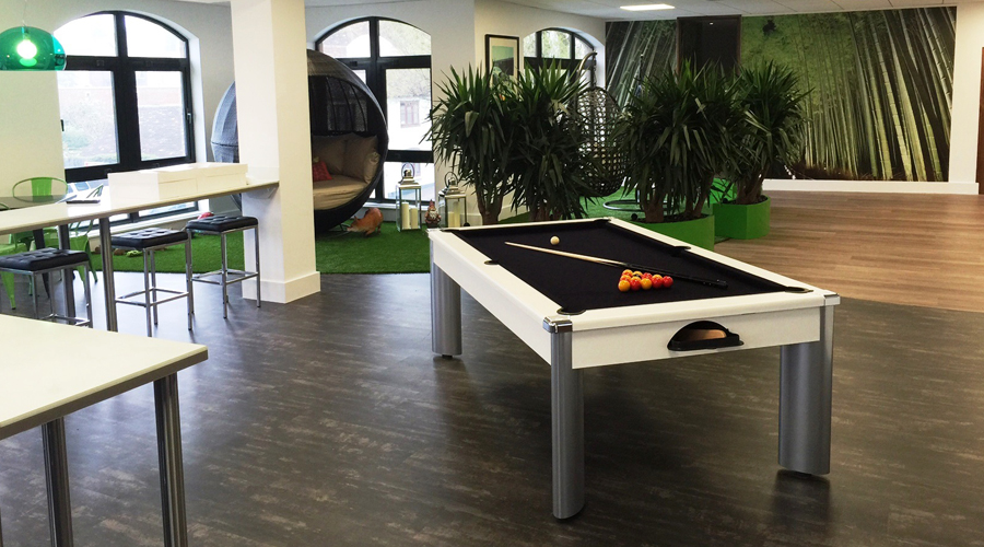 Pool Table- Relaxation Area