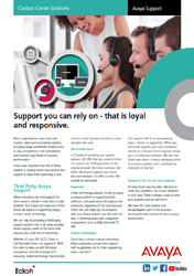 Avaya Support Guide